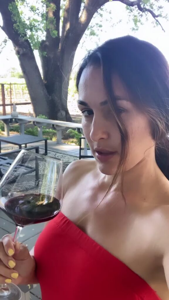 WWE Star Nikki Bella Shares Intimate Videos With Fiancée Artem 4