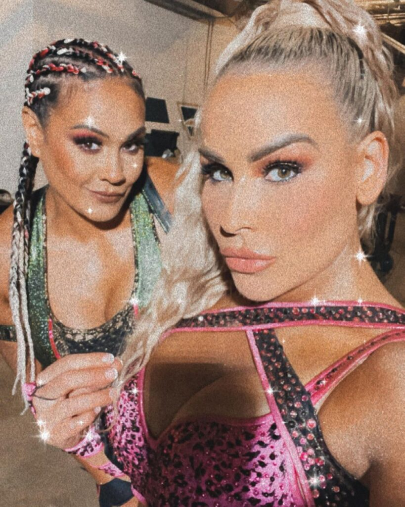 WWE Star Natalya Can't Stop Showing Off In Busty In-Ring Gears 4