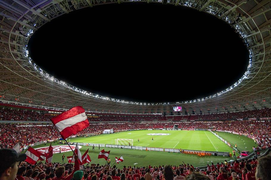 crowd-sport-stadium-fans
