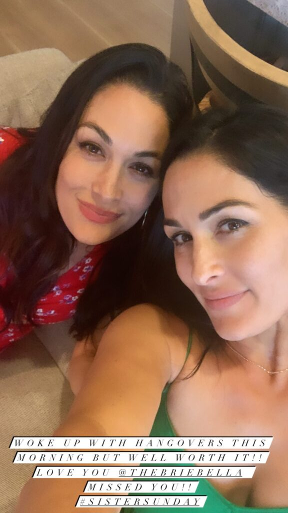 WWE Star Nikki Bella Gets Cozy With Her Papi Artem On A Date Lunch 96