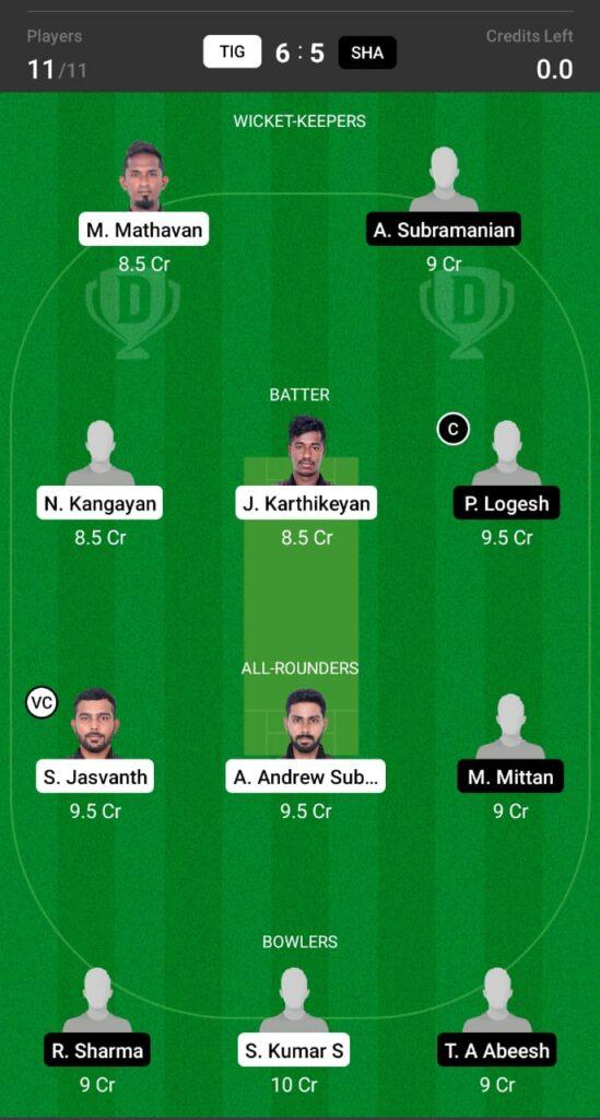 TIG vs SHA Dream11 Prediction, Fantasy Cricket Tips, Dream XI Team, BYJU'S Pondicherry T20 2021